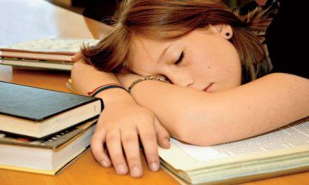 ¿Cómo llevan los estudios mis hijos?